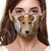 Wire Fox Terrier F-Mask V1 (Set of 7 Pieces)