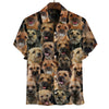 You Will Have A Bunch Of Border Terriers - Shirt V1