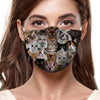 You Will Have A Bunch Of Cats F-Mask