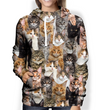 You Will Have A Bunch Of Maine Coon Cats - Hoodie V1