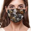 You Will Have A Bunch Of Schnoodles F-Mask
