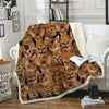 You Will Have A Bunch Of Abyssinian Cats - Blanket V1