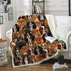 You Will Have A Bunch Of Cavalier King Charles Spaniels - Blanket V1