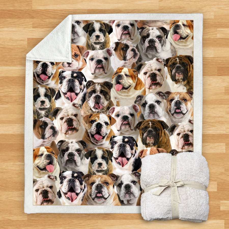 You Will Have A Bunch Of English Bulldogs - Blanket V1