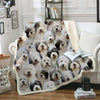 You Will Have A Bunch Of Old English Sheepdogs - Blanket V1