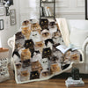 You Will Have A Bunch Of Persian Cats - Blanket V1