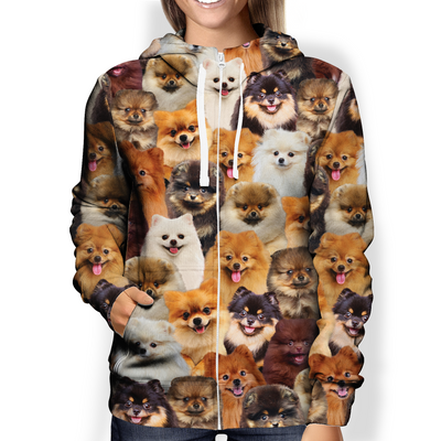 You Will Have A Bunch Of Pomeranians - Hoodie V1