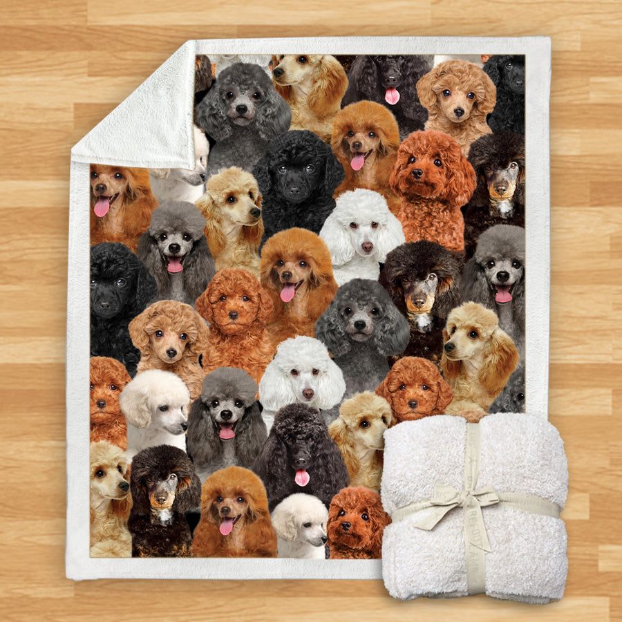 You Will Have A Bunch Of Poodles - Blanket V1