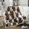 You Will Have A Bunch Of Scottish Terriers - Blanket V1