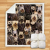 You Will Have A Bunch Of Skye Terriers - Blanket V1