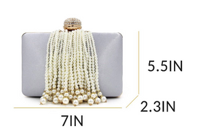 Silver Pearl Tassel Trendy Clutch - Mirza By SMK