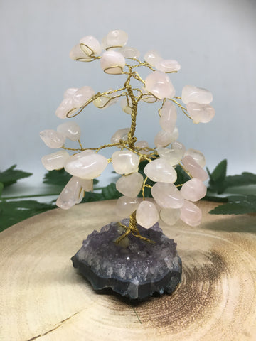Rose Quartz Gemstone Tree with Amethyst Base