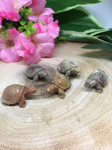 Tortoise Soapstone Carving