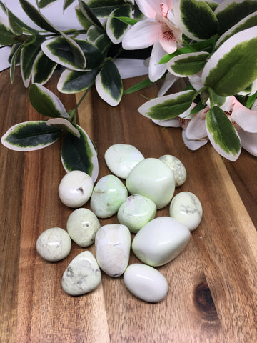 Lemon Chrysoprase Tumble Stones