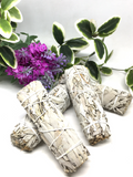 "White Sage Stick 3.5"" - Small"