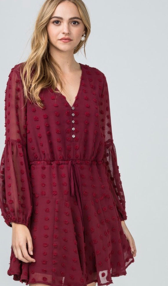 Burgundy Swiss Dot Dress