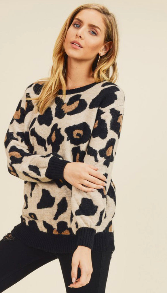 Leopard Print Black Banded Sweater