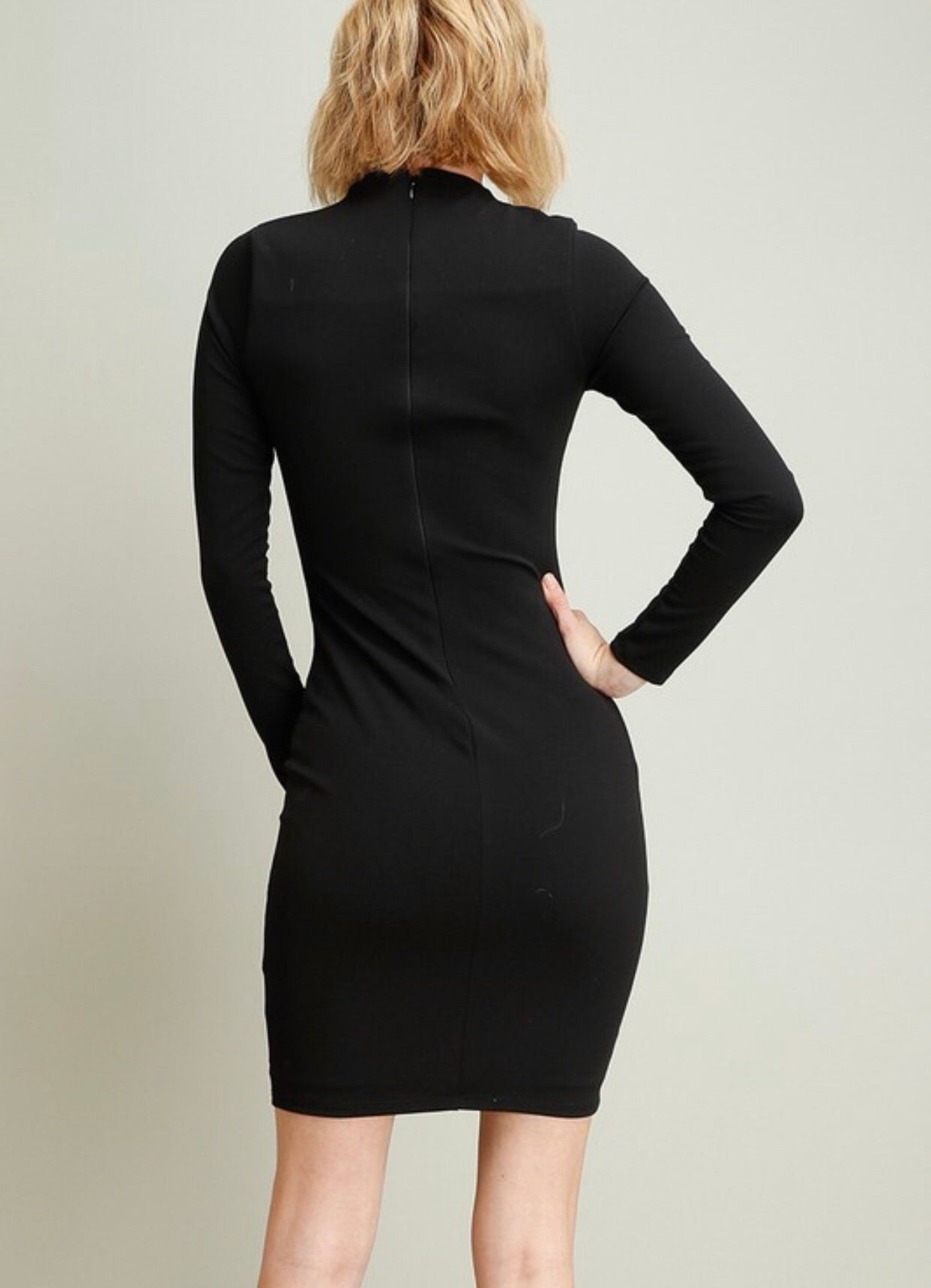 Black High Neck Fitted Dress