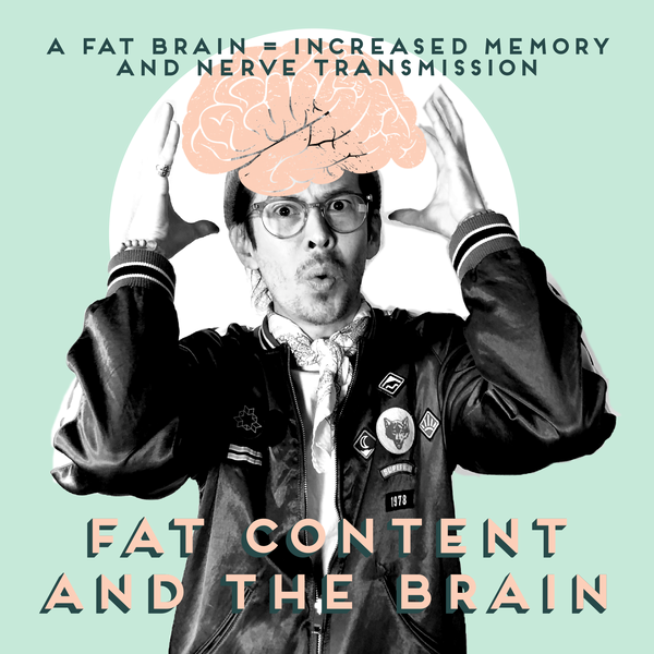 Fat Content and the Brain