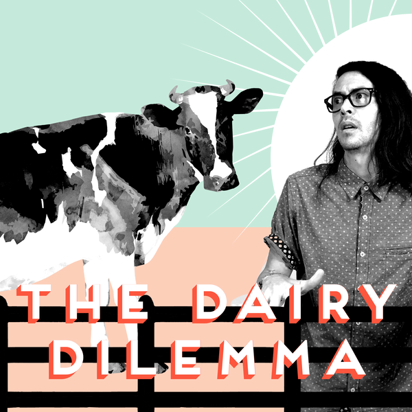 The Dairy Dilemma