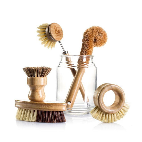 Seed & Sprout Eco Brush Set (Early Dec Pre-order)