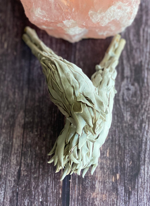 White Sage Smudge Sticks - 100% Ethically Australian Grown