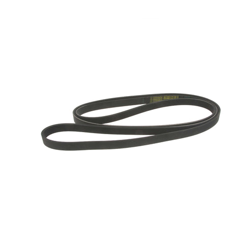 Accessory Belt for S4/S5 3.0T