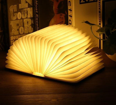 Wooden Book Lamp Penguin Delivery