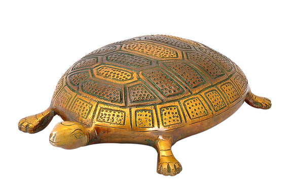 Auspicious Tortoise Figure in Brass