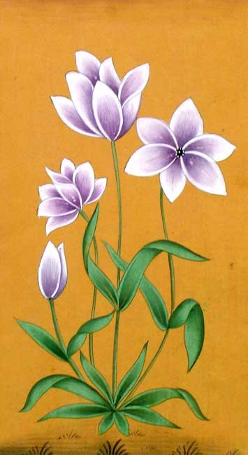 Flowers - Indian Art Miniature Painting