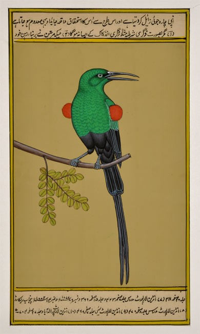 Miniature Painting 'Green Bird'