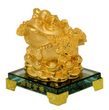 Fengshui Money Frog on Gold Coins