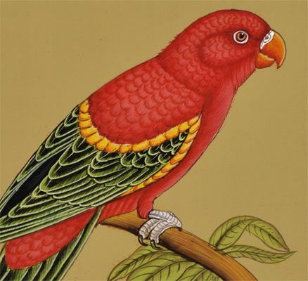 Red Parrot - Miniature Painting