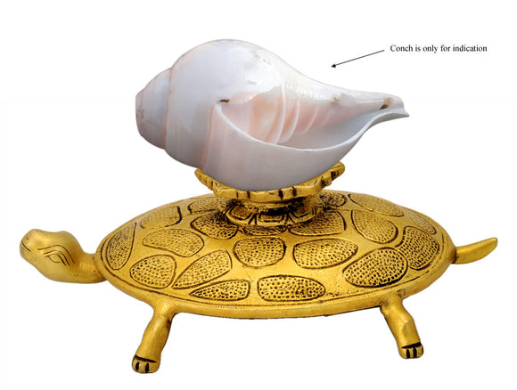 Tortoise Brass Stand for Conch