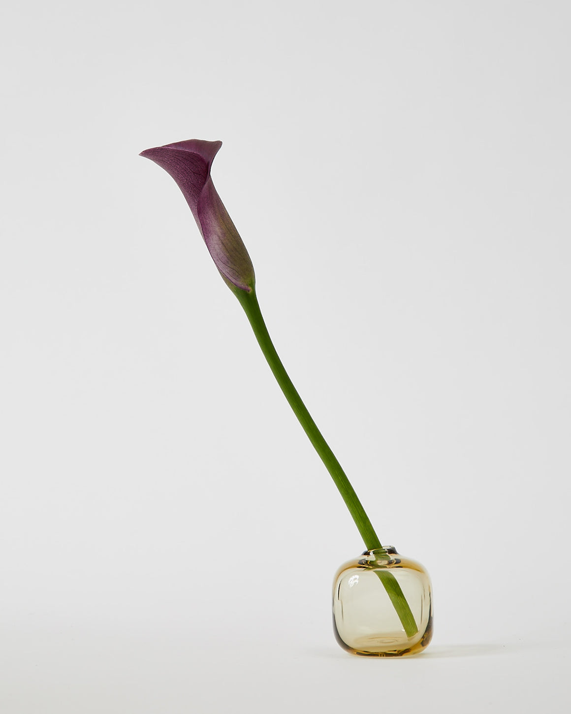 Kelly Bubble Bud Vase - Honey