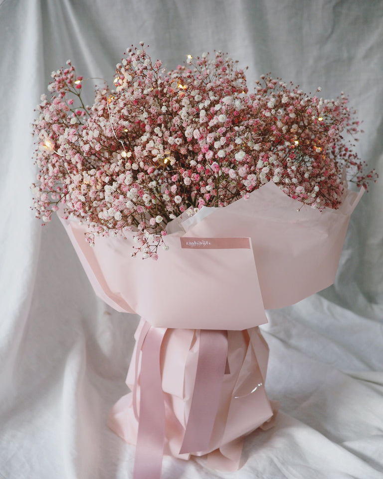 Pink baby's breath