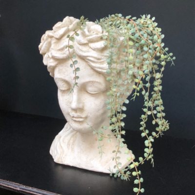 Senecio Faux Plant styled in a Flower Girl Bust head