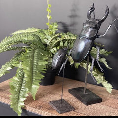 Blue Black Beetle Sculpture, Small