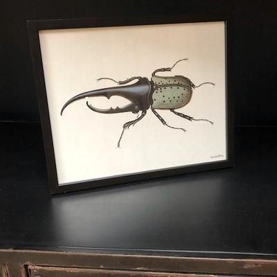 Beetle Poster & Black Frame by VanillaFly