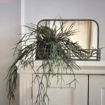 Wall Mirror with Wire Shelf, Small