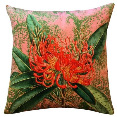 Coral Nuten Velvet Cushion