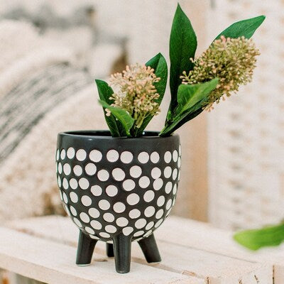 Black and white spotted indoor plant pot legs
