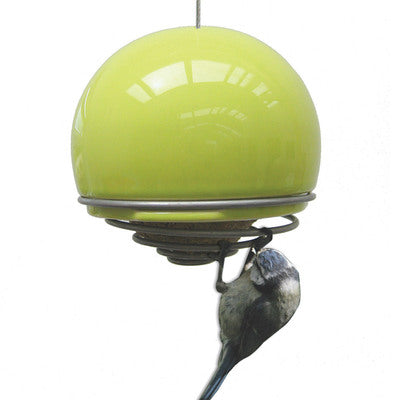 Birdball Belle Bird Feeder, Lime