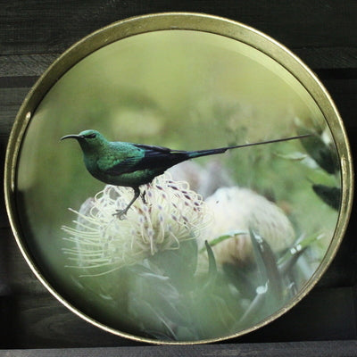Waltham Round Tray with Bird Pattern, Small