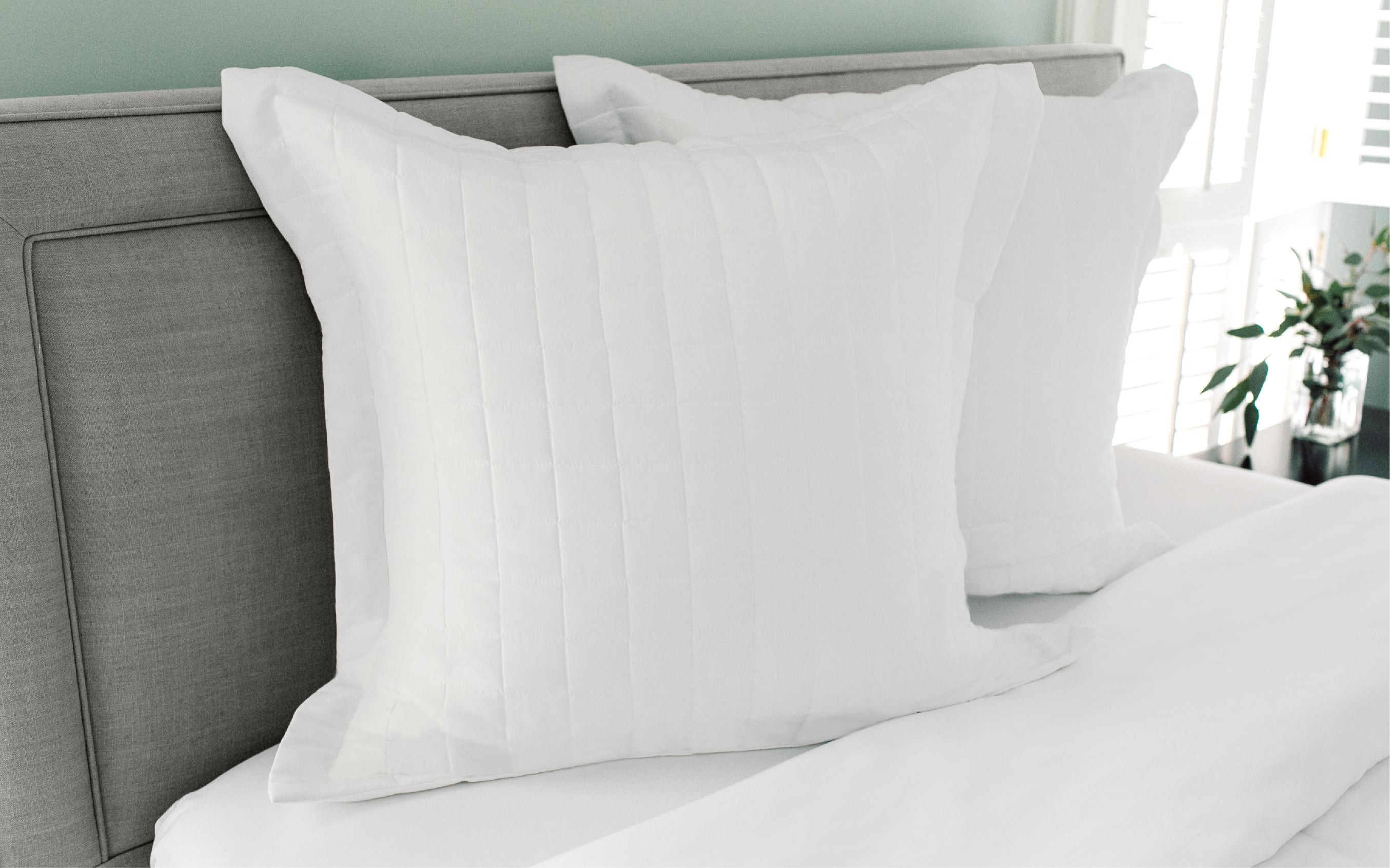 Euro Pillow Sham The Comphy Company