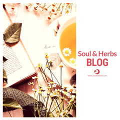 soul and herbs blog