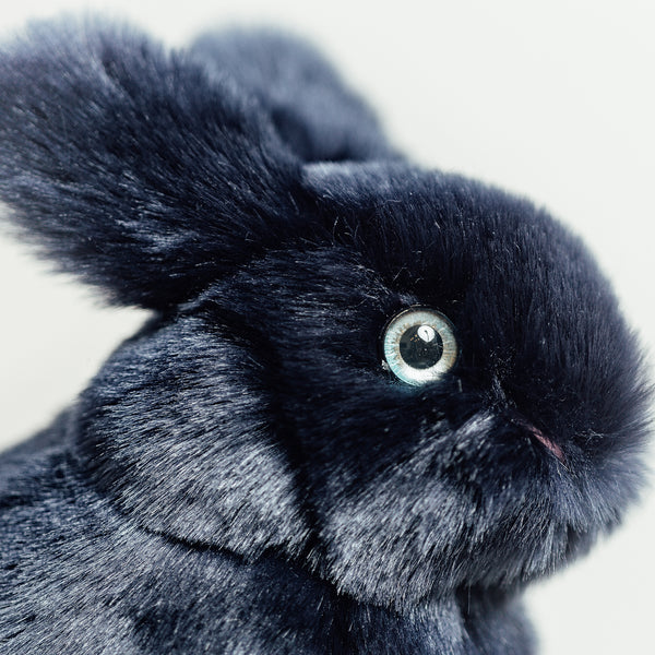 Navy Blue Rabbit Plush