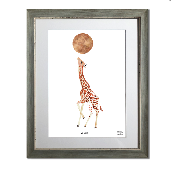 The Giraffe and Venus
