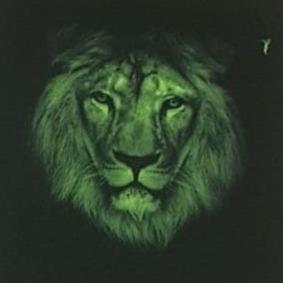 Green Lion Mask