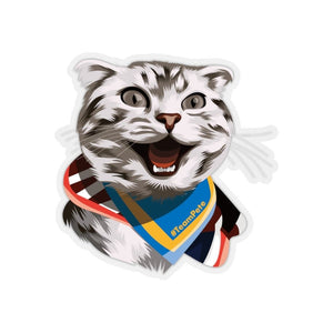 Happy Excited Cat - #TeamPete - Kiss-Cut Stickers